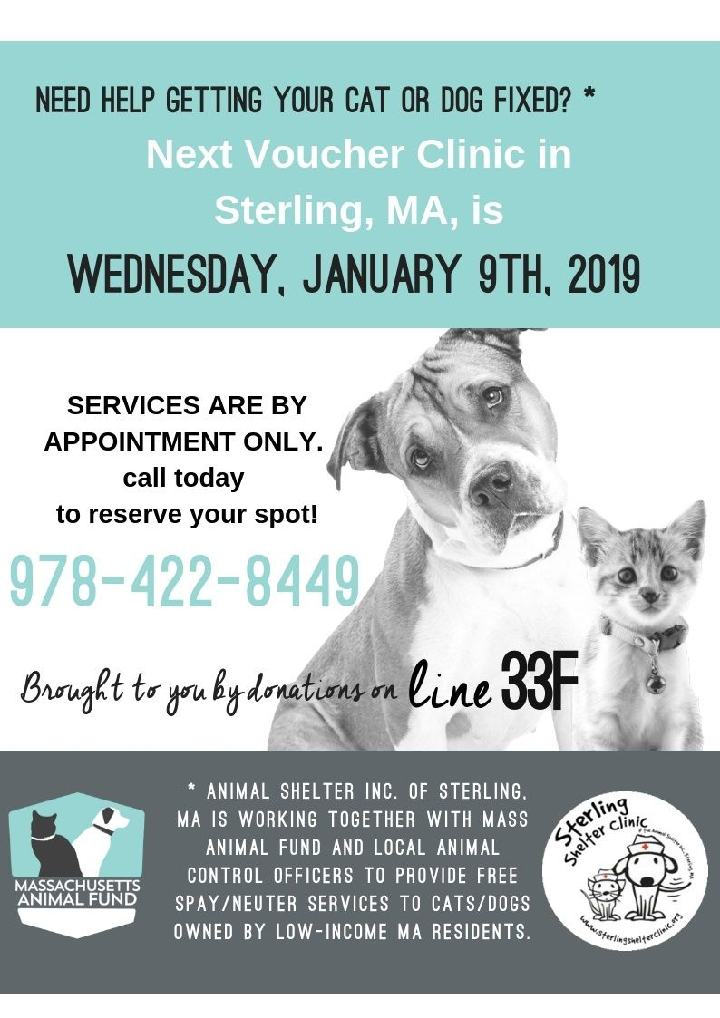 5th MASS ANIMAL FUND DAY FREE SPAY/NEUTER FOR QUALIFYING