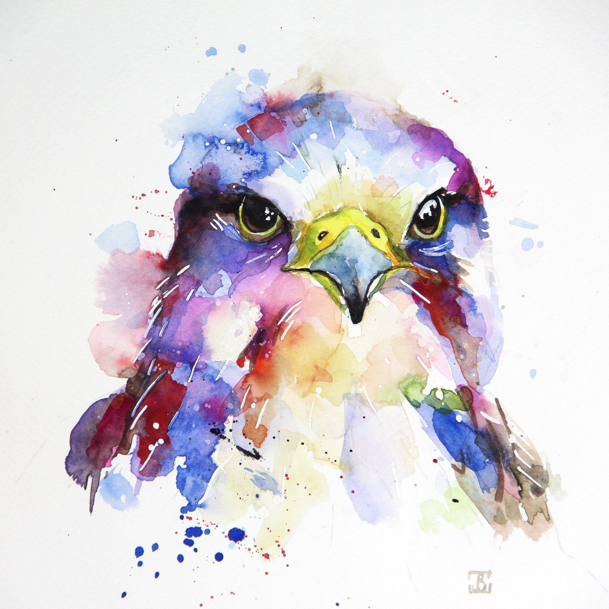 Peregrine Falcon Original Watercolor Painting Birds Watercolor