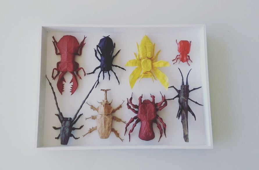 My Collection Of Origami Insects And Arachnids Folded By Me And My