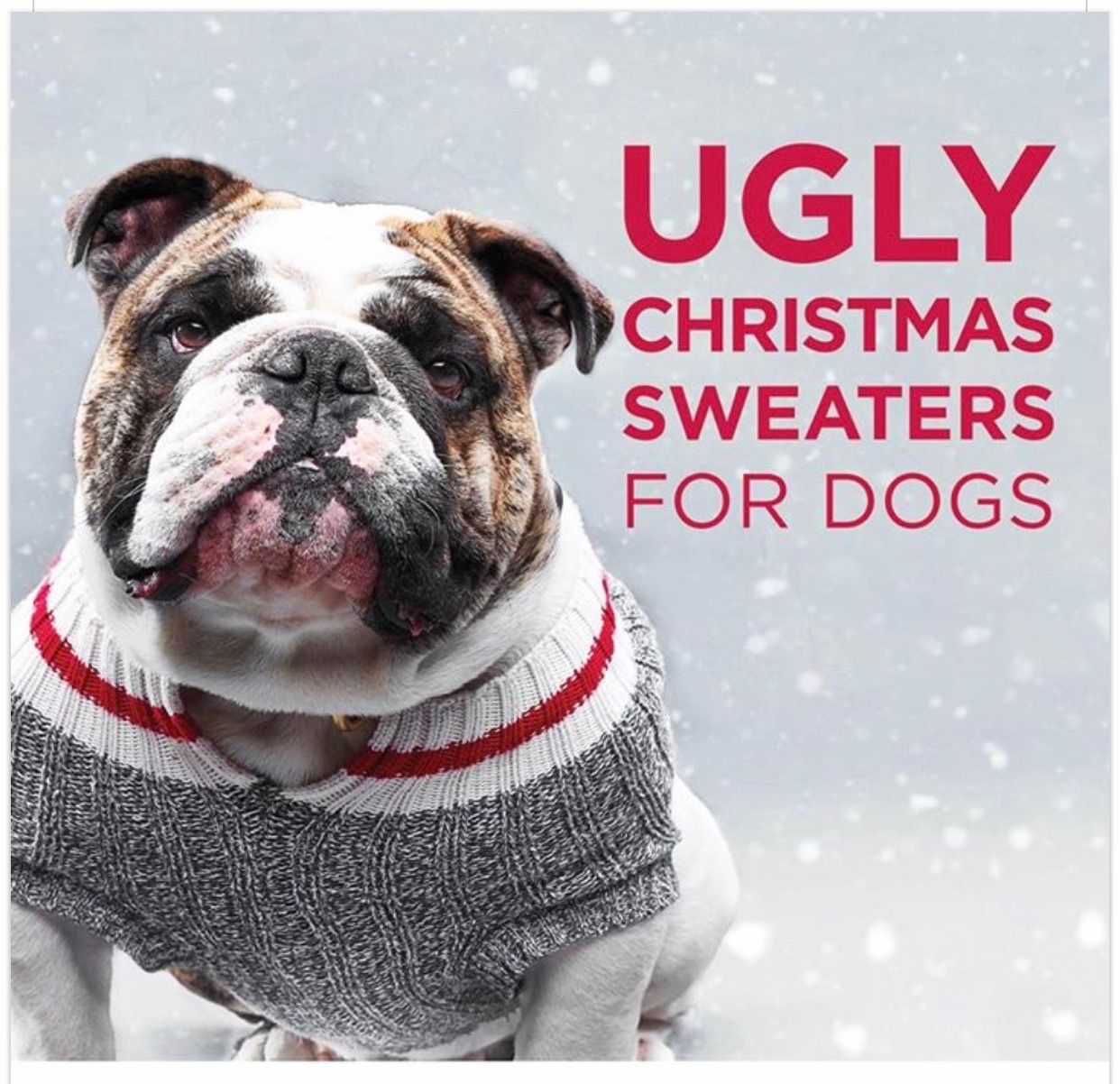 Dog Sweaters By Paul On Doggies Bulldog Pet Holiday
