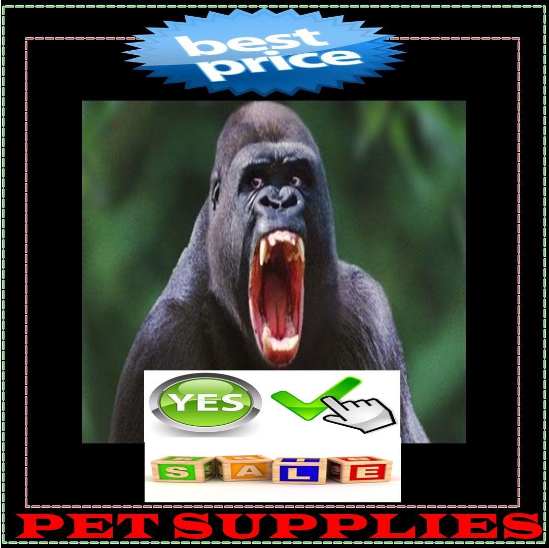 Petsmart Near Me Pet Supplies Pets Pet Shop