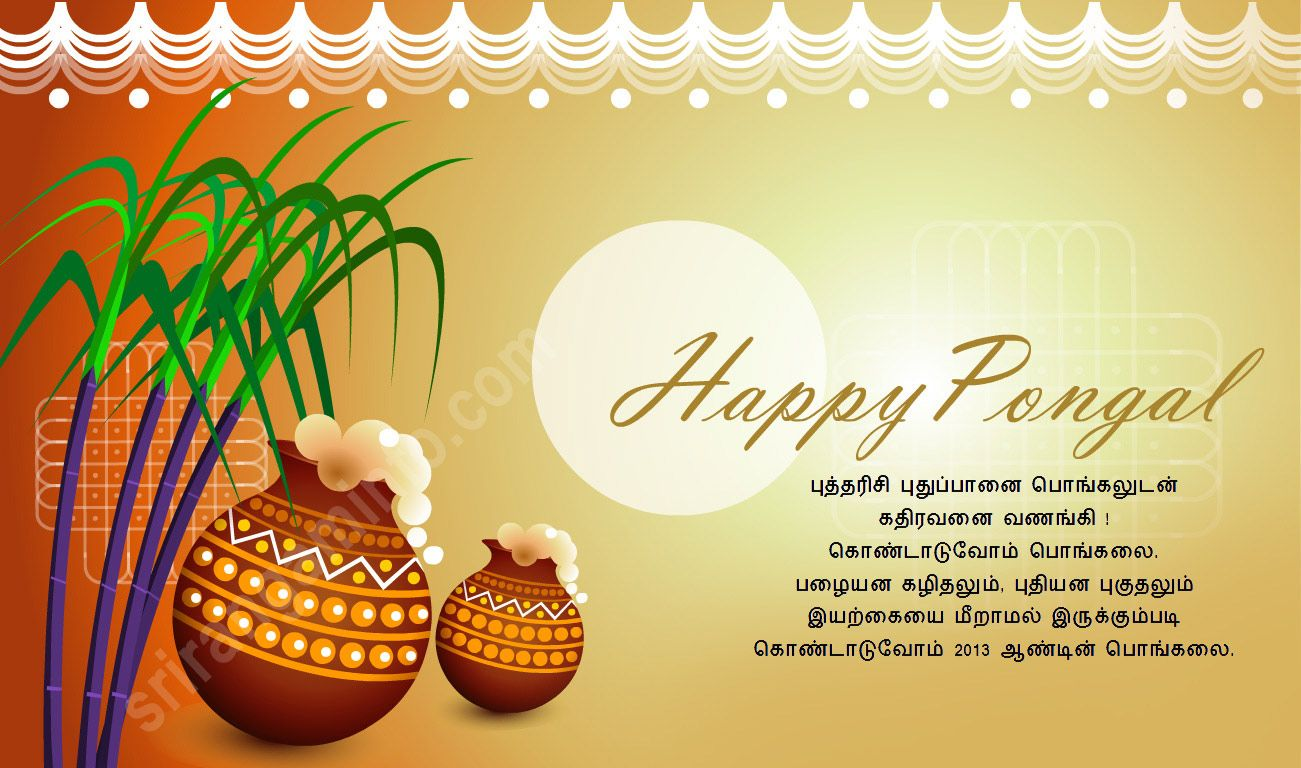 Pongal greetings card pinterest happy pongal pongal greetings m4hsunfo