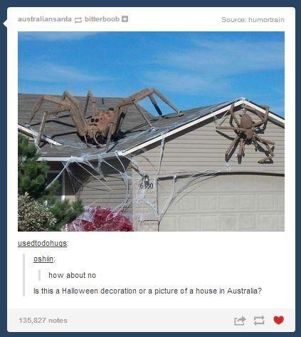 Australia Halloween Outdoor Decorations Outdoor Halloween