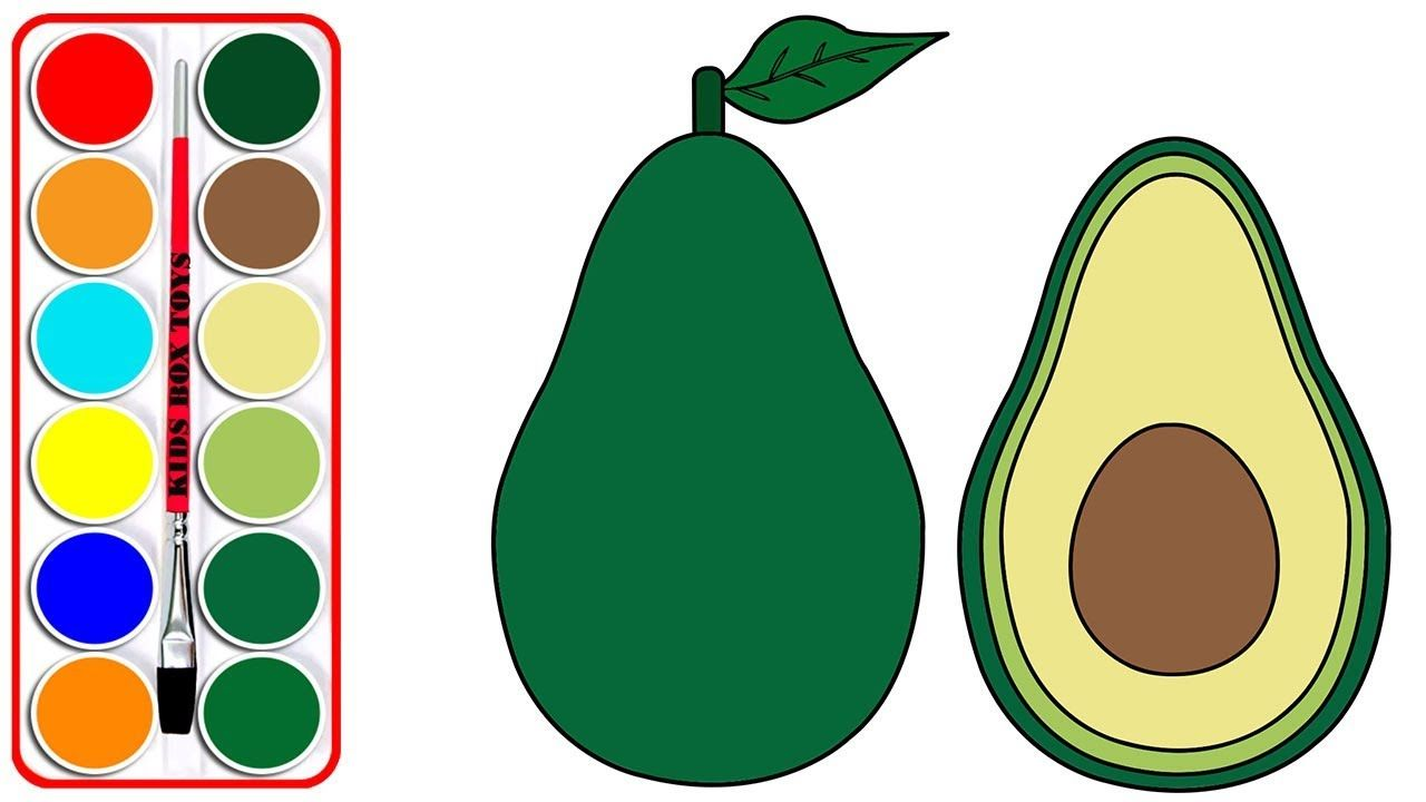 How to Draw Avocado Step by Step Avocado Coloring pages