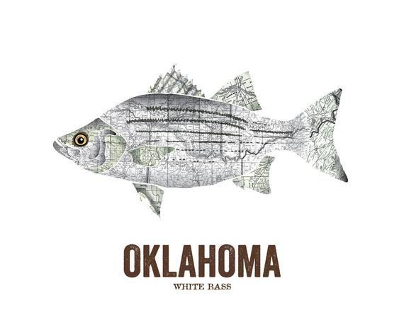 Oklahoma State Fish Map art Nature Outdoor art Vintage Map art Art print Wall decor Fish Art