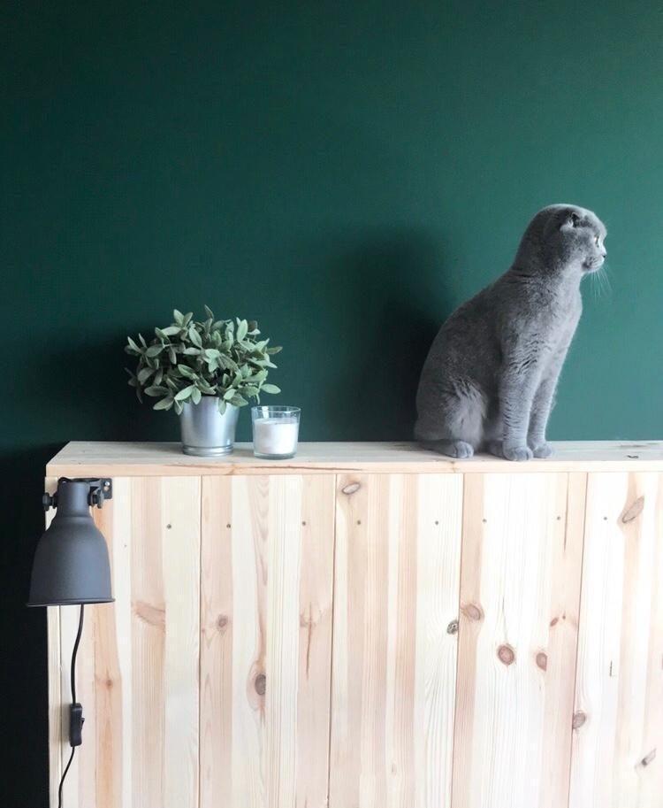 Good morning! #cat #kopfteil #diy #bett #holz #schla in 2018