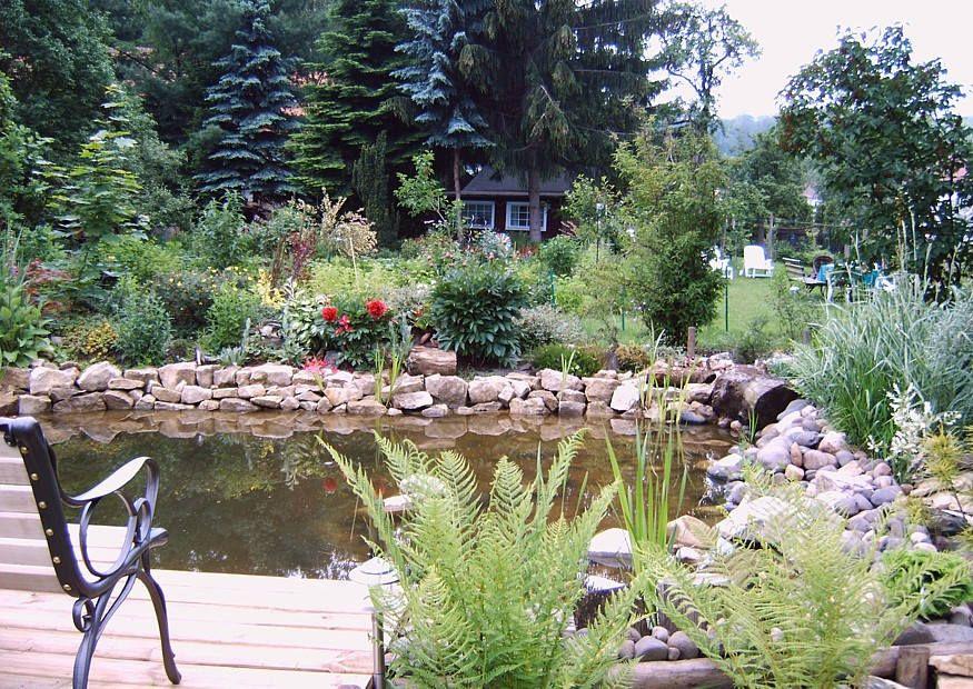 Gartenteich anlegen und gestalten - Kleine gartenteiche gestalten ...