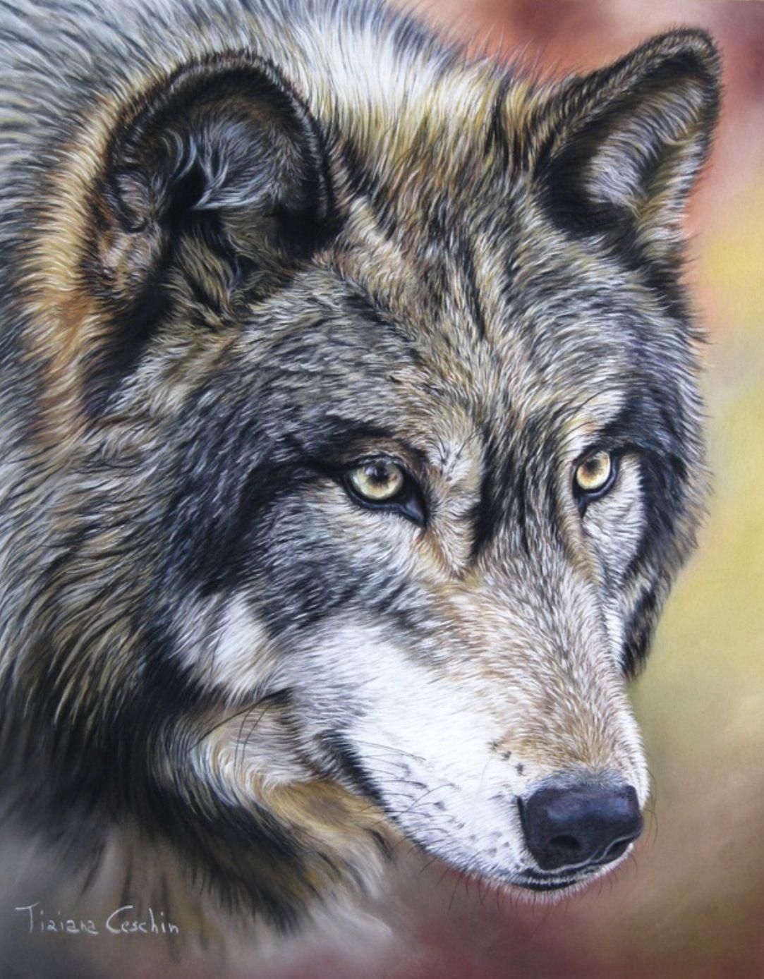 Фото тату волк на икре написавшего подобную