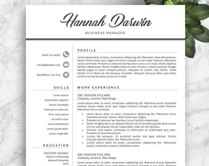 Modern Resume Template - The Amelia | Modern Resume Template