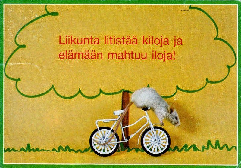 Polkupyörät ja pyöräily - 106951943635258866150 - Picasa-verkkoalbumit. PALETTI/PR  J.P.  Beuselinck  Belgium