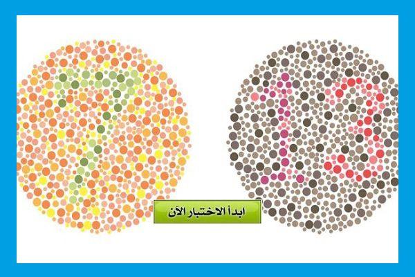 نتيجتي 6 من 6 في اختبار عمى الالوان Color Blind Art Room Color