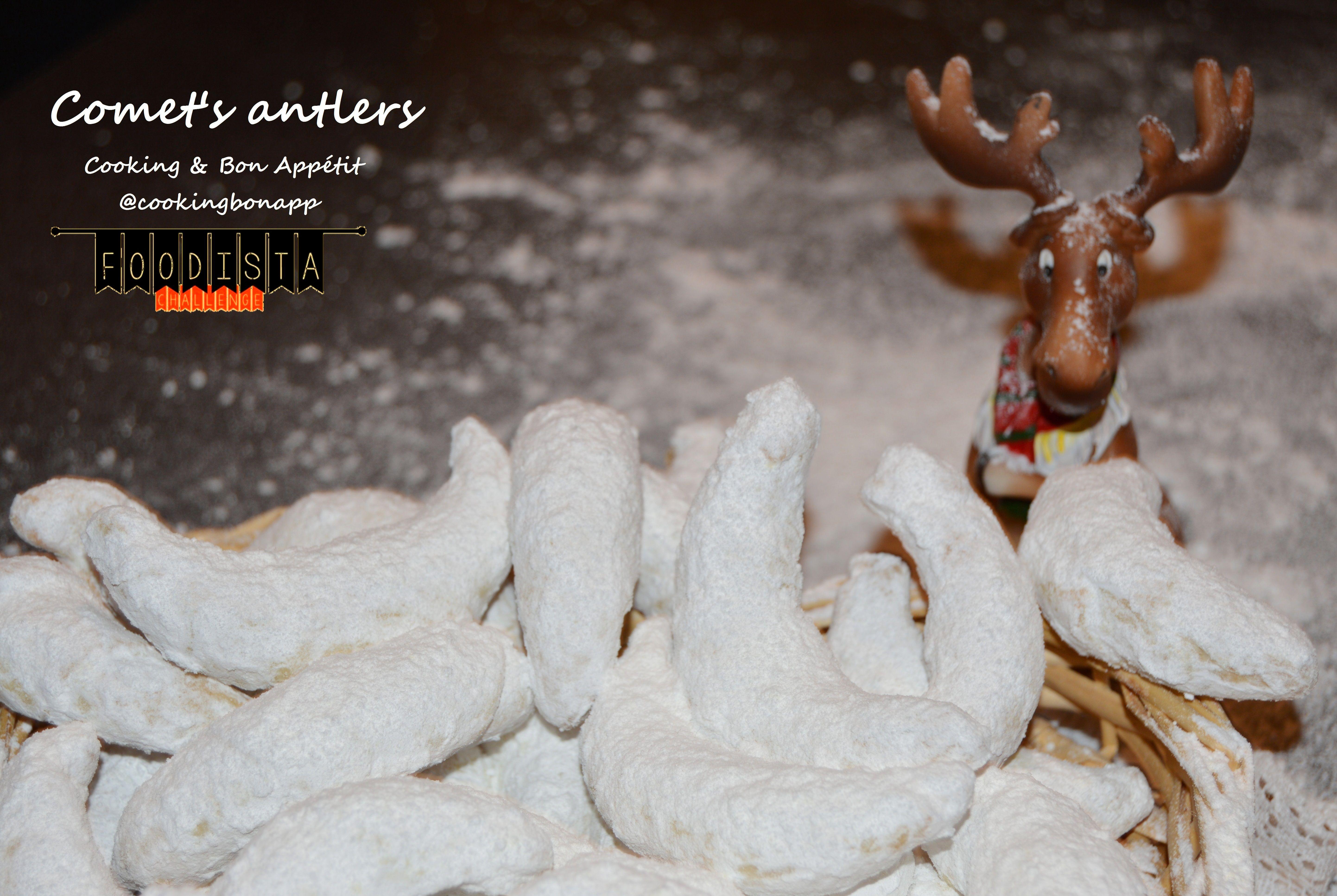 J17 -> Comet's antlers / Cornes de rennes = Christmas Gazelle Horns