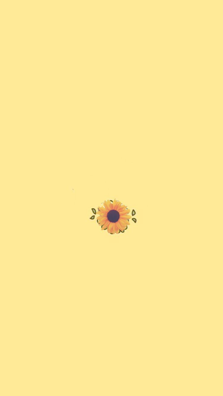 Wallpapers For Iphone X Girly Off Gadgets Computer Definition Wallpaper For Iphone Xr Flowers Som Iphone Wallpaper Yellow Sunflower Wallpaper Yellow Wallpaper