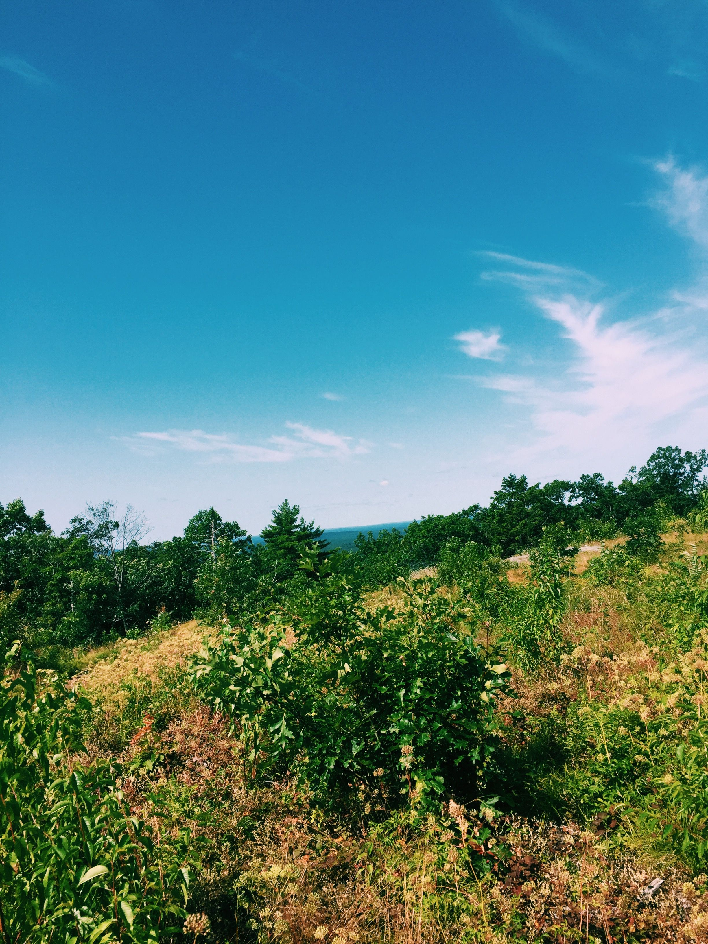 view from on top of the mountain #sky #earth #nature #hikes #clouds #green