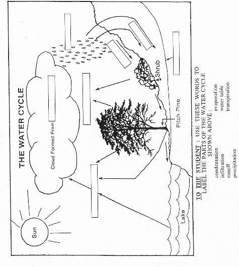Water Cycle Worksheet Middle School Beautiful Water Cycle