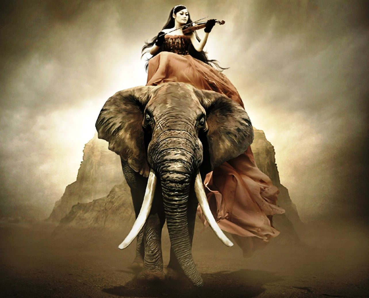 elephant and violonist nature music violin woman girl