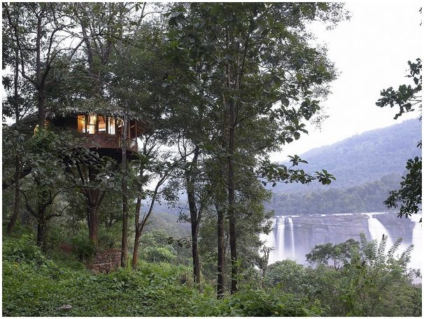 Tree House In Athirapally Rainforest Treehouse S Forest
