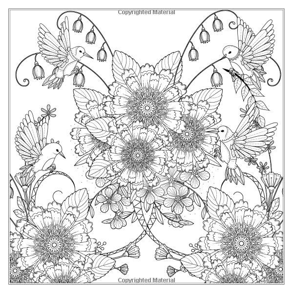 Amazon.com: El jardín mágico: terapia creativa arte para adultos ...