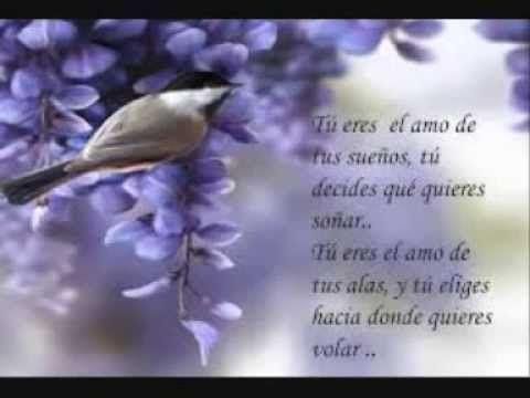Frases De Jorge Bucay Frases Frases Maravillosas Y