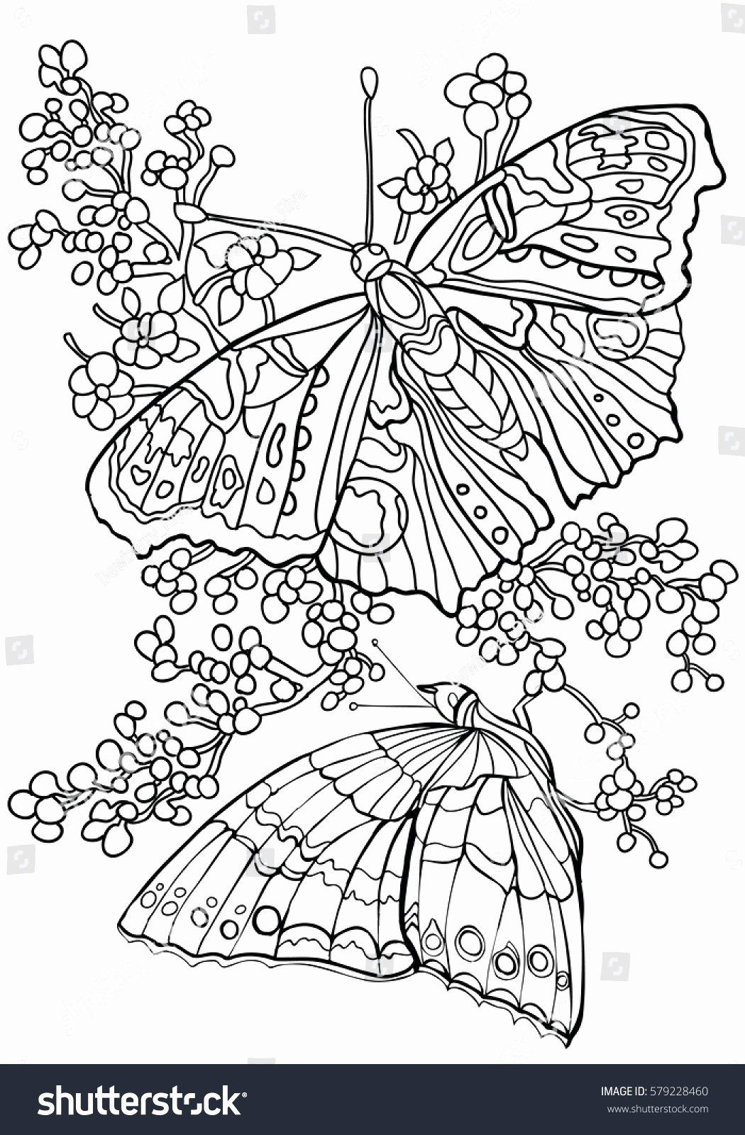Trippy Coloring Book Pages Meetopia Coloring Pages Butterfly Coloring Page Unicorn Coloring Pages Geometric Coloring Pages
