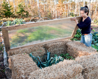 An easytobuild strawbale cold frame is a good way to overwinter