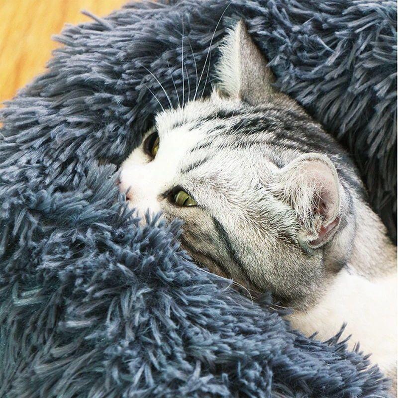 Pin On Pet Beds