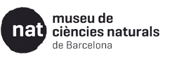 Museuciencies generating and sharing knowledge about diversity and evolution of the natural - Museus gratis primer diumenge de mes ...