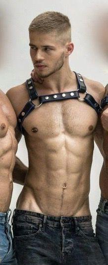 Hot gay muscle men