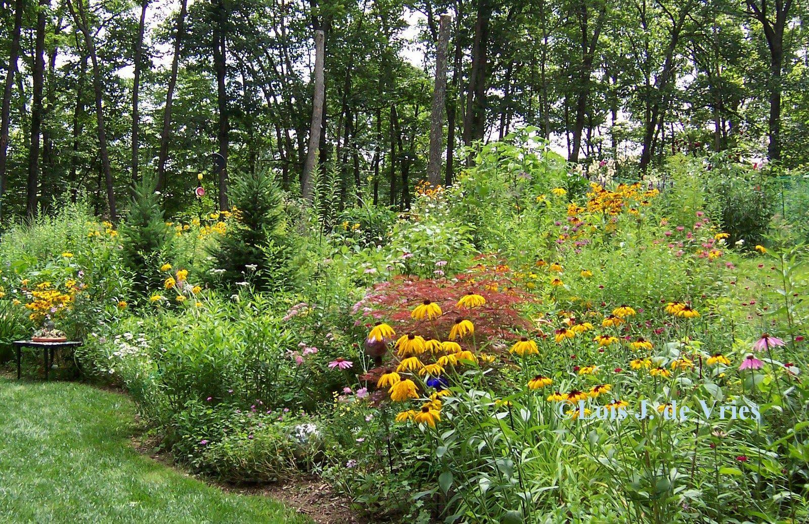 Park Art|My WordPress Blog_What Is A Leach Field Sewer