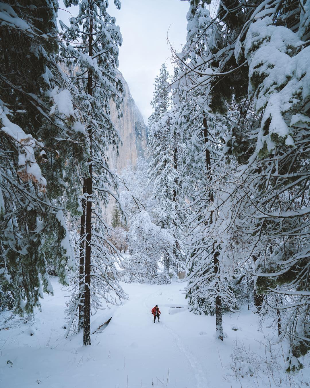 wild journey, one man, nature journals, nature journals list
