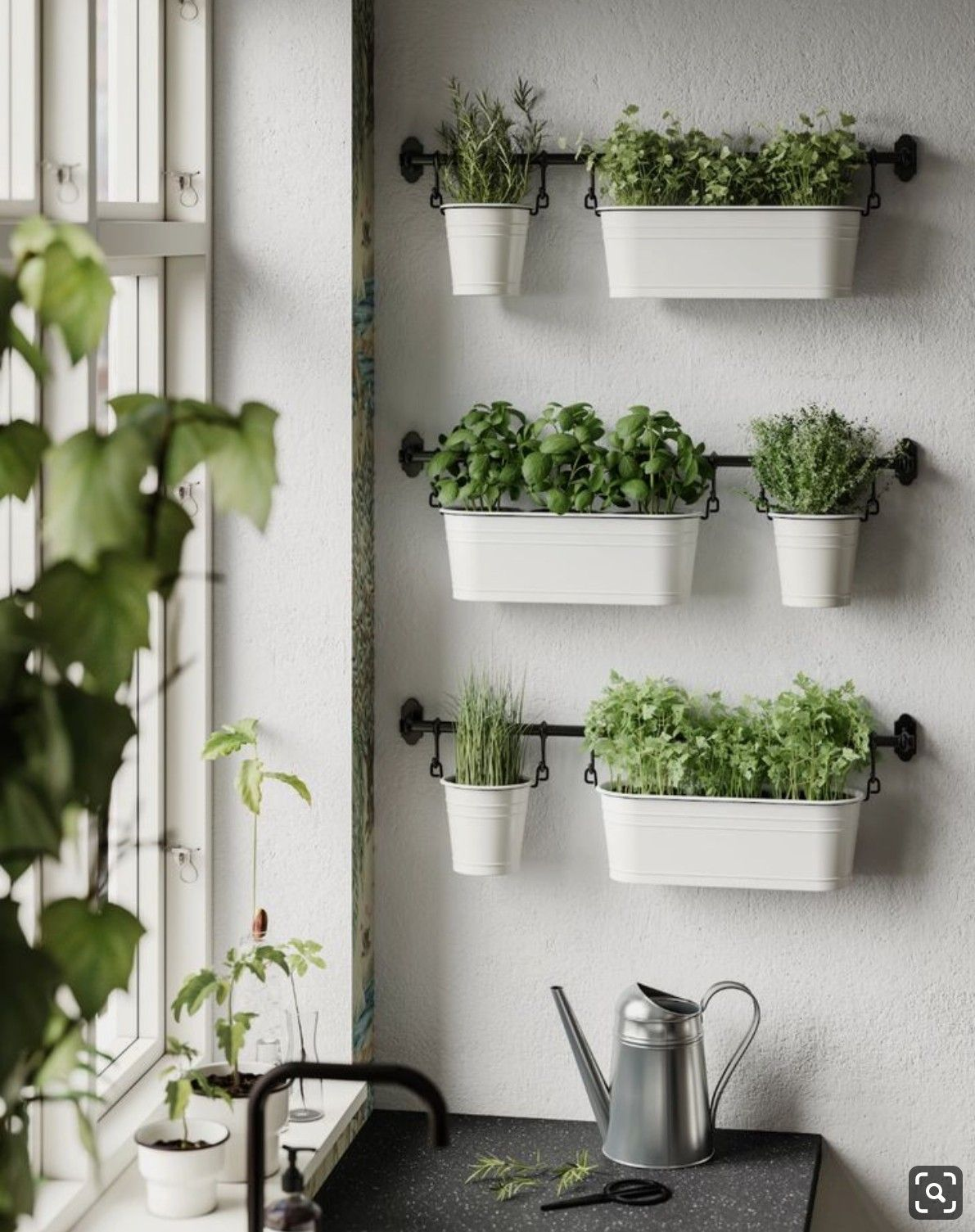 Pin By Simon King On Decor By Color Herb Garden In Kitchen Kitchen Plants Kitchen Herbs