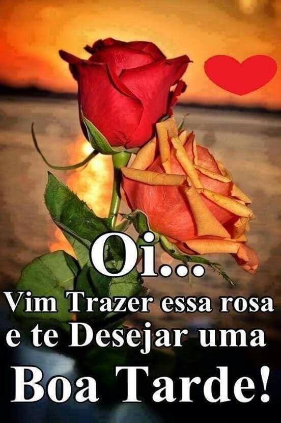 Boa Tarde Com uma linda Rosa para você ficar feliz