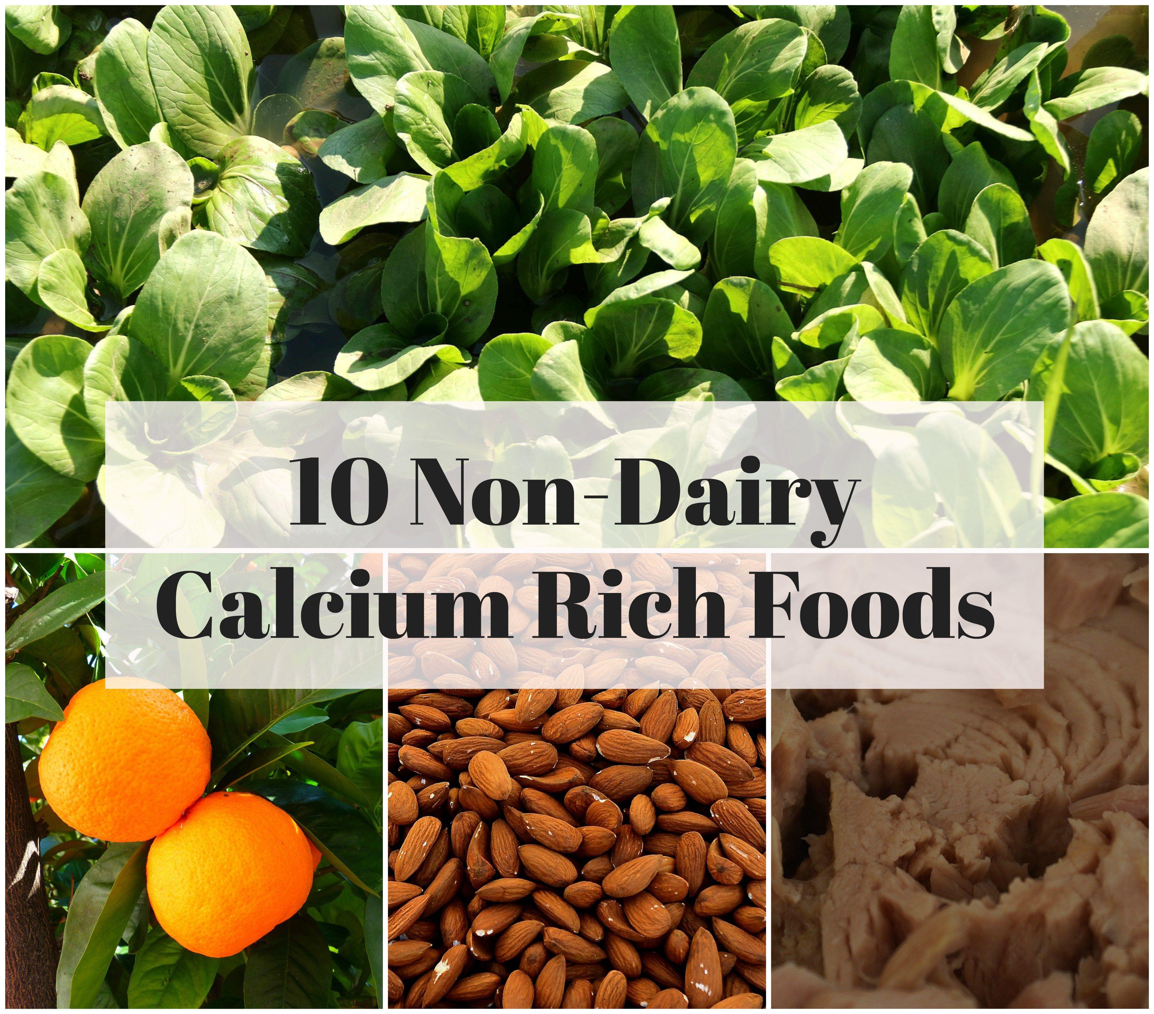 10 non dairy calcium rich foods xperimentsinliving top 10 non dairy calcium rich foods xperimentsinliving forumfinder Images