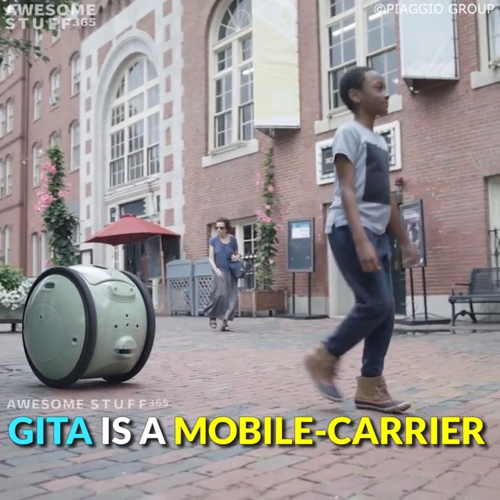 Gita is a two-wheeled, cargo-carrying device