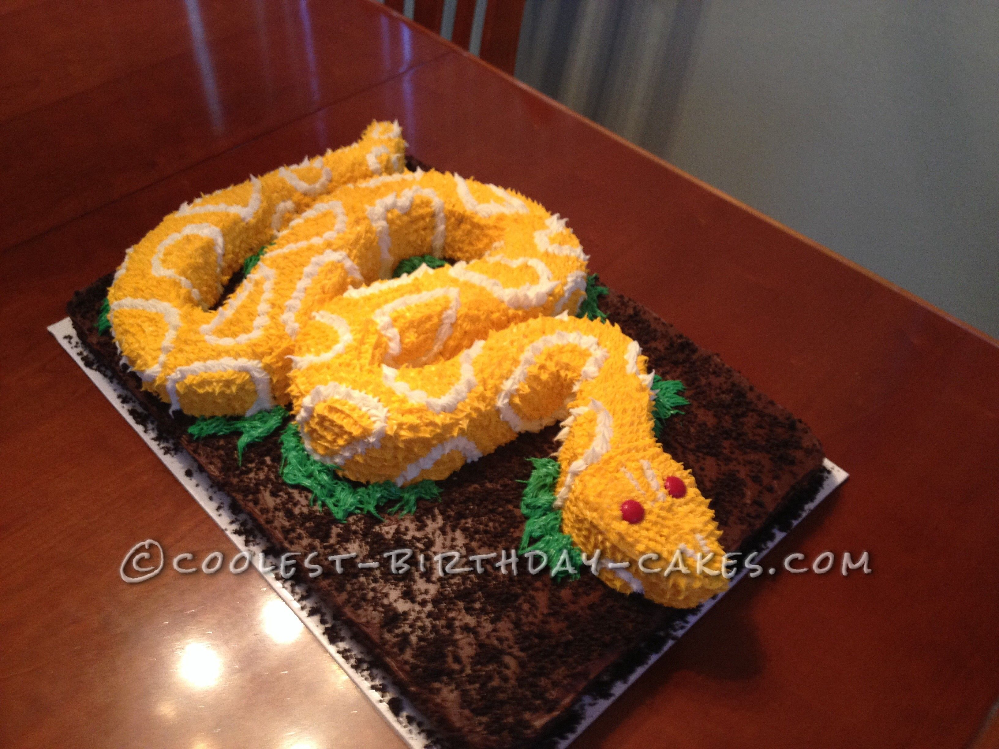 Decoration Gateau Facile Coolest Snake Birthday Cake Cake Ideas Pinterest