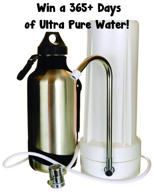 Win A Year Of Ultra Pure Water From New Wave Enviro Plus A Seriously Safe Stainless Steel Water Bottle Pure Products Pure Water Stainless Steel Water Bottle