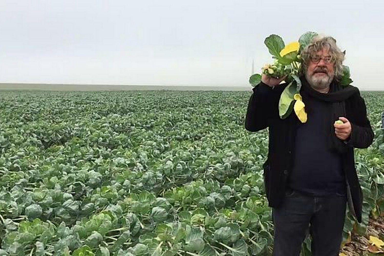 Spruitjes zijn hartstikke lekker! Dat weten te weinig mensen, denkt onze Felix Wilbrik. Hij neemt je in deze video mee naar de Flevopolder en legt haarfijn uit wat het verschil is tussen Duitse en Nederlandse spruiten.