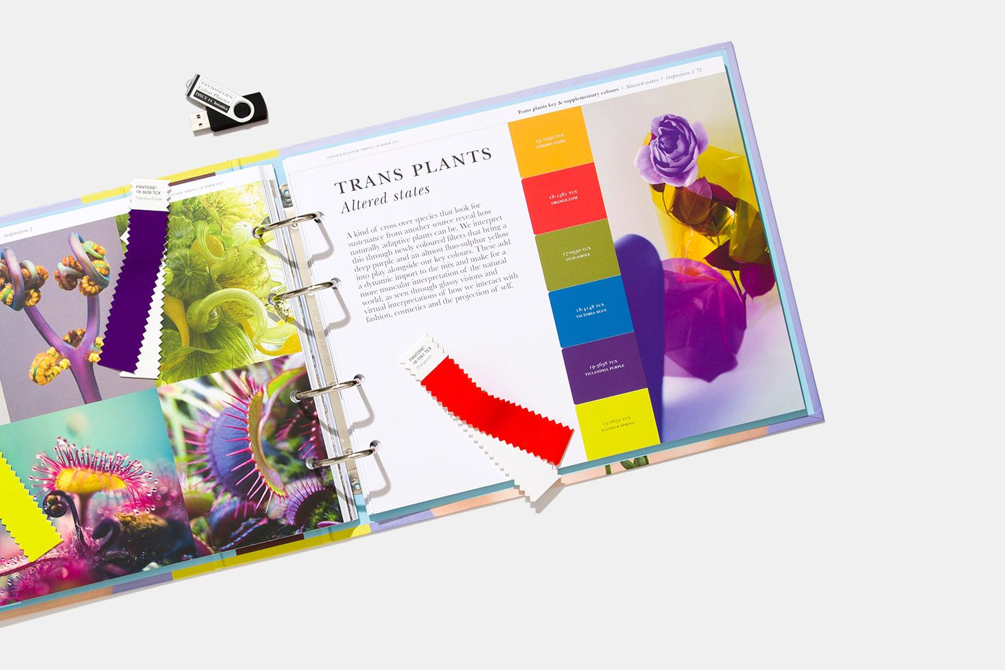 PANTONEVIEW Colour Planner Spring/Summer 2021 in 2020