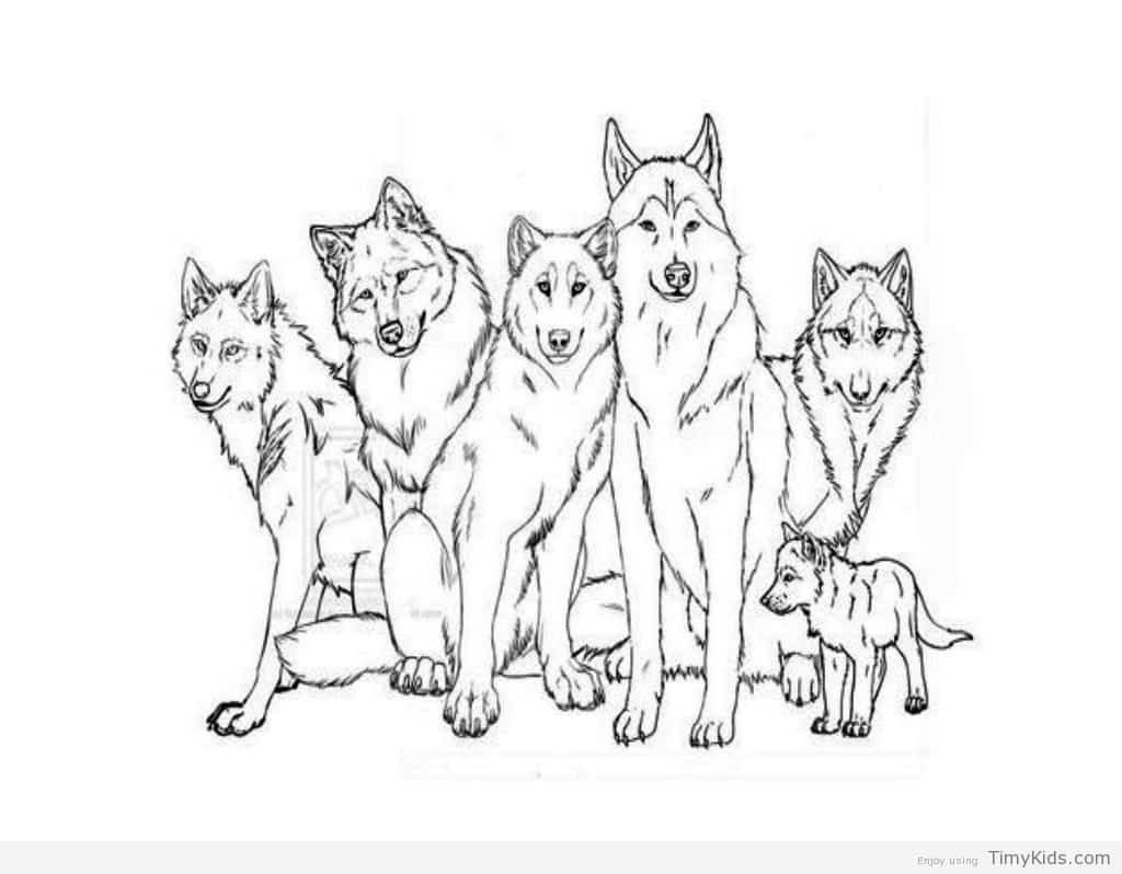 Wolf Coloring Pages for Kids TimyKids   Animal coloring ...