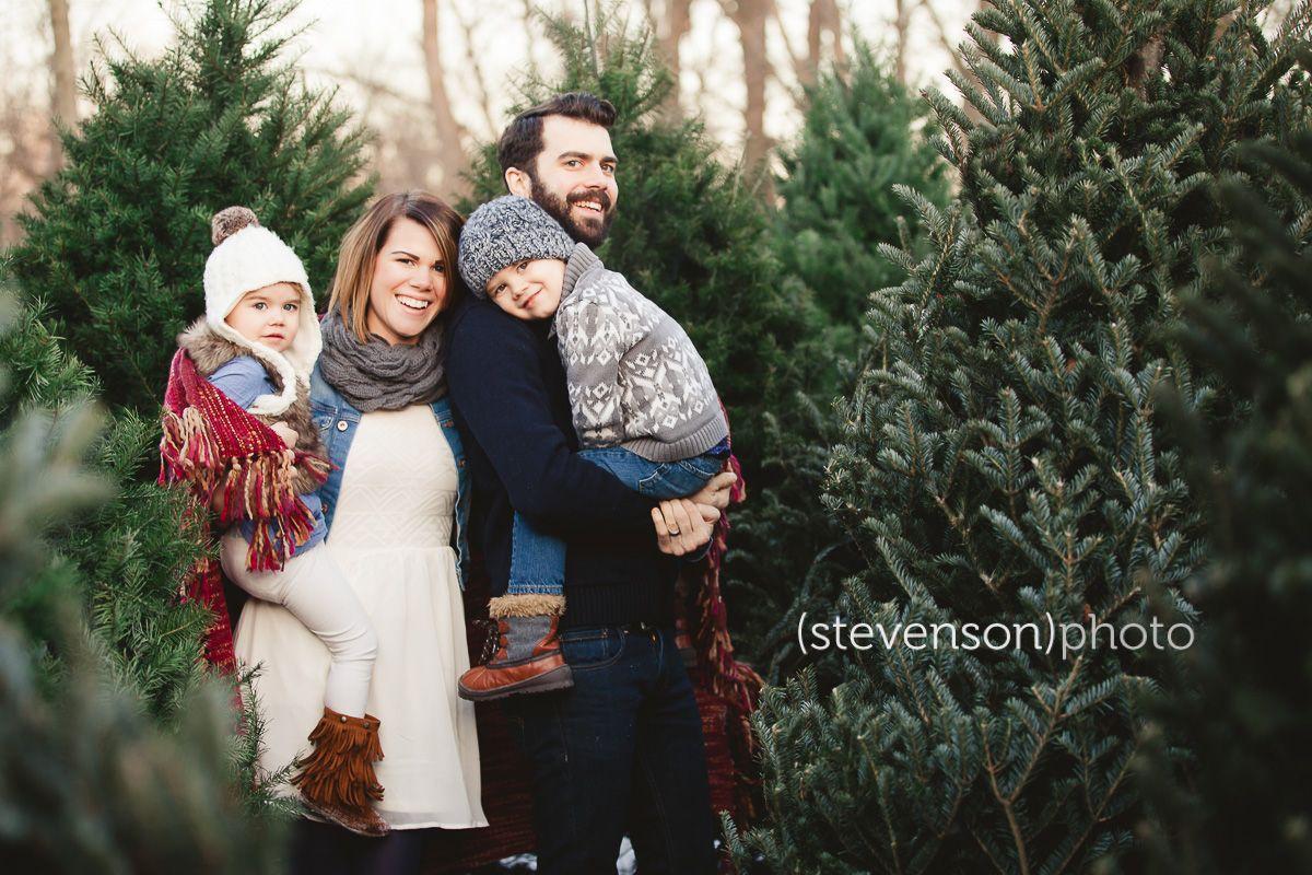 5ft 1 6m Real Christmas Tree Atherton Christmas Tree Farm