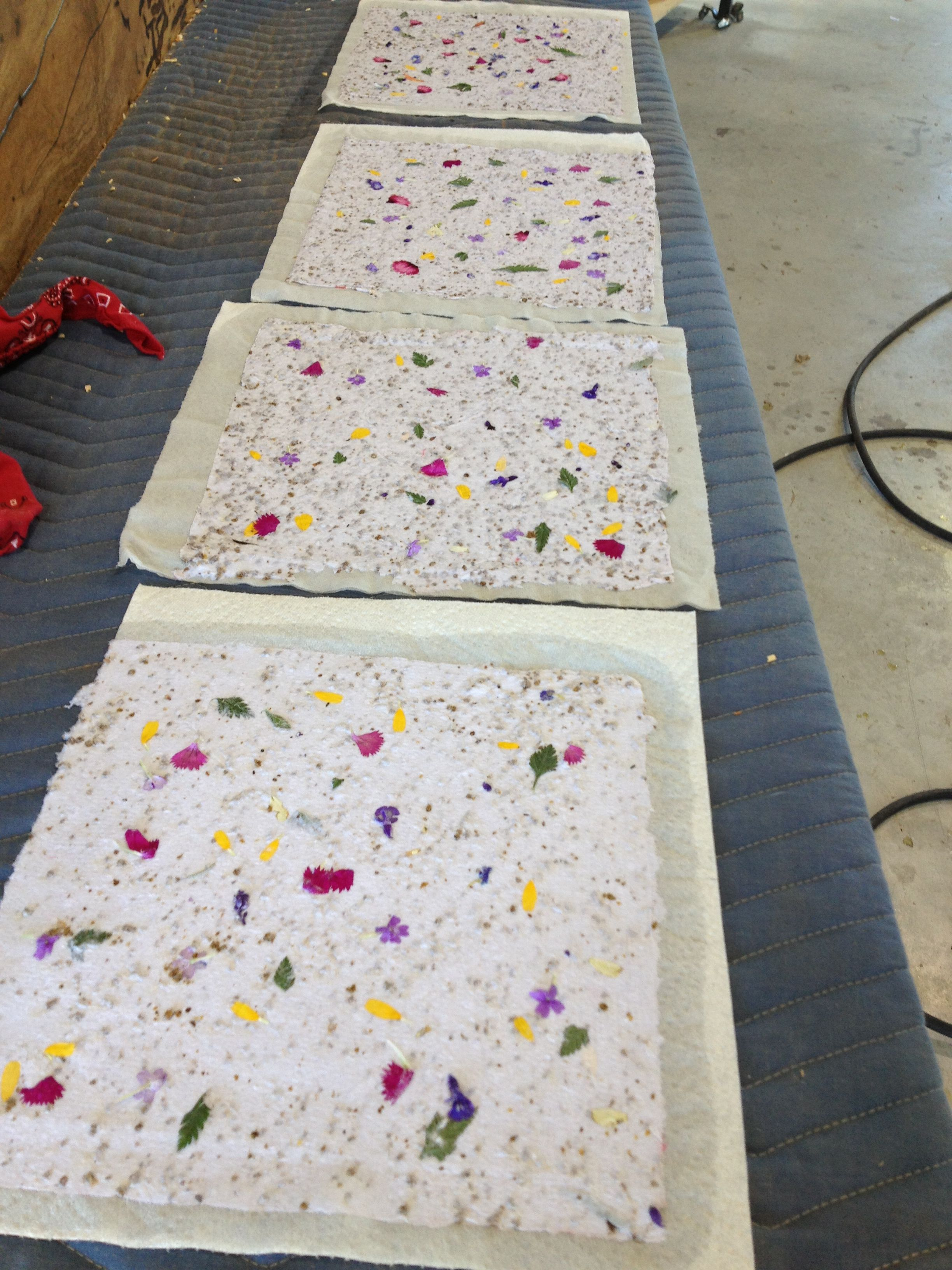Home Made Paper With Wildflower Seeds Flower Peddles And Leaves
