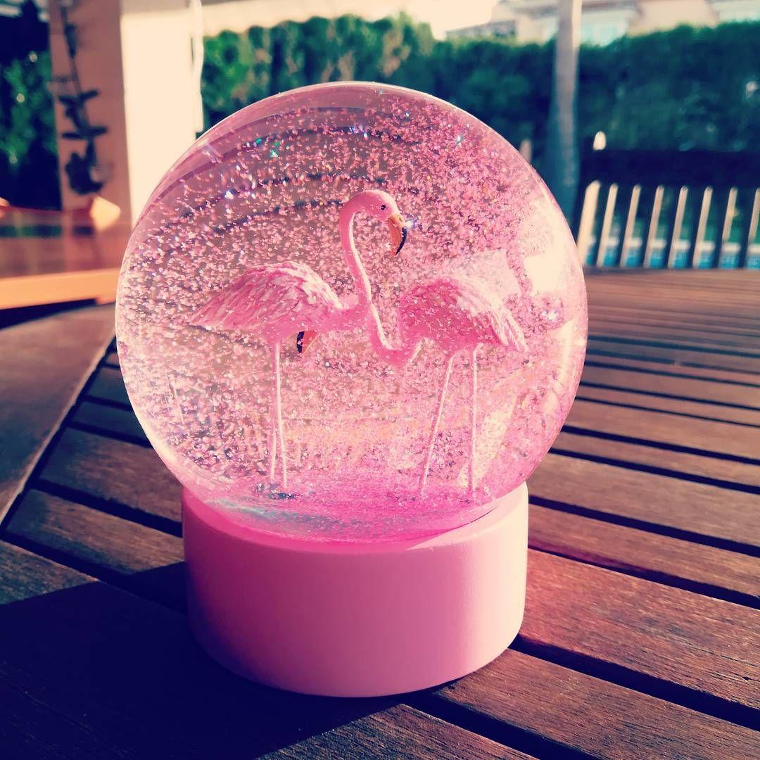 El mejor regalo del mundo!!! #misdosobsesionesjuntas