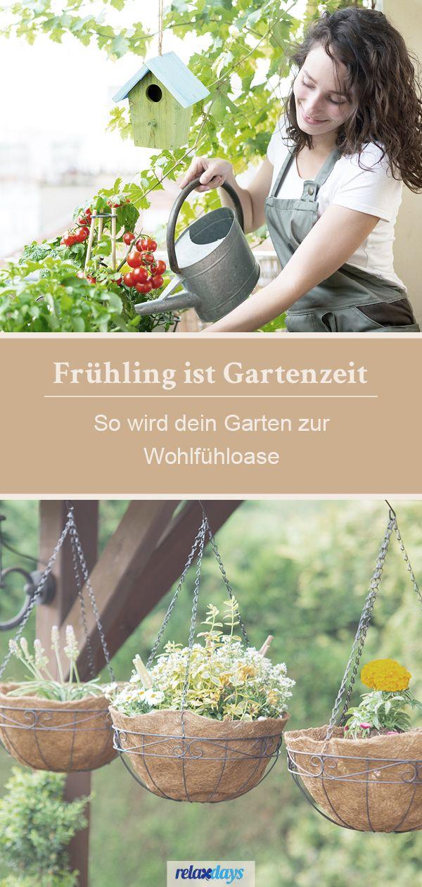 Gestalte Den Perfekten Garten Entdecke Gartenmobel Pflanzenzubehor Nisthilfen Oder Accessoires In 2021 Garten Pflanzen Garten Pflanzen
