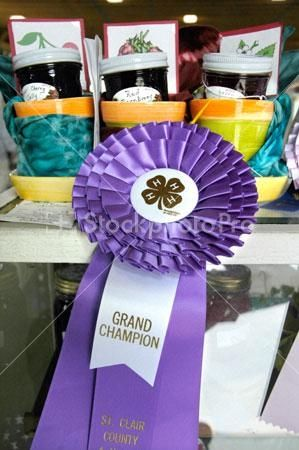 You earned the Grand Champion ribbon at the Colorado State