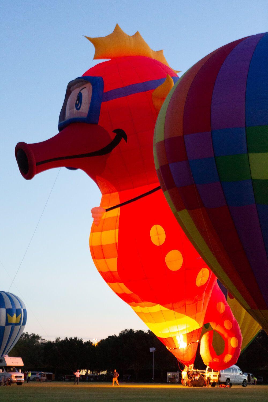 Hot Air Balloon And Balloon Glow Photos From The 2019 Villages Polo Club Hot Air Balloon Festiv Hot Air Balloon Festival Balloon Festivals Air Balloon Festival