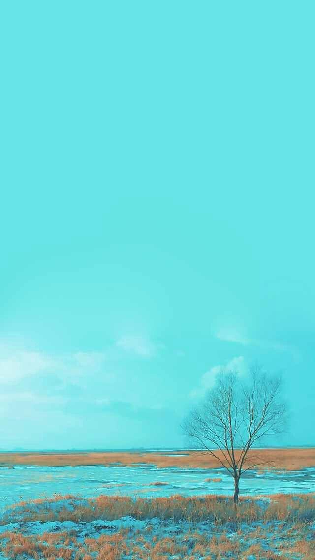 Pin Oleh Blue Heart Di Backdrop Set Ref Latar Belakang Fotografi Alam Pemandangan