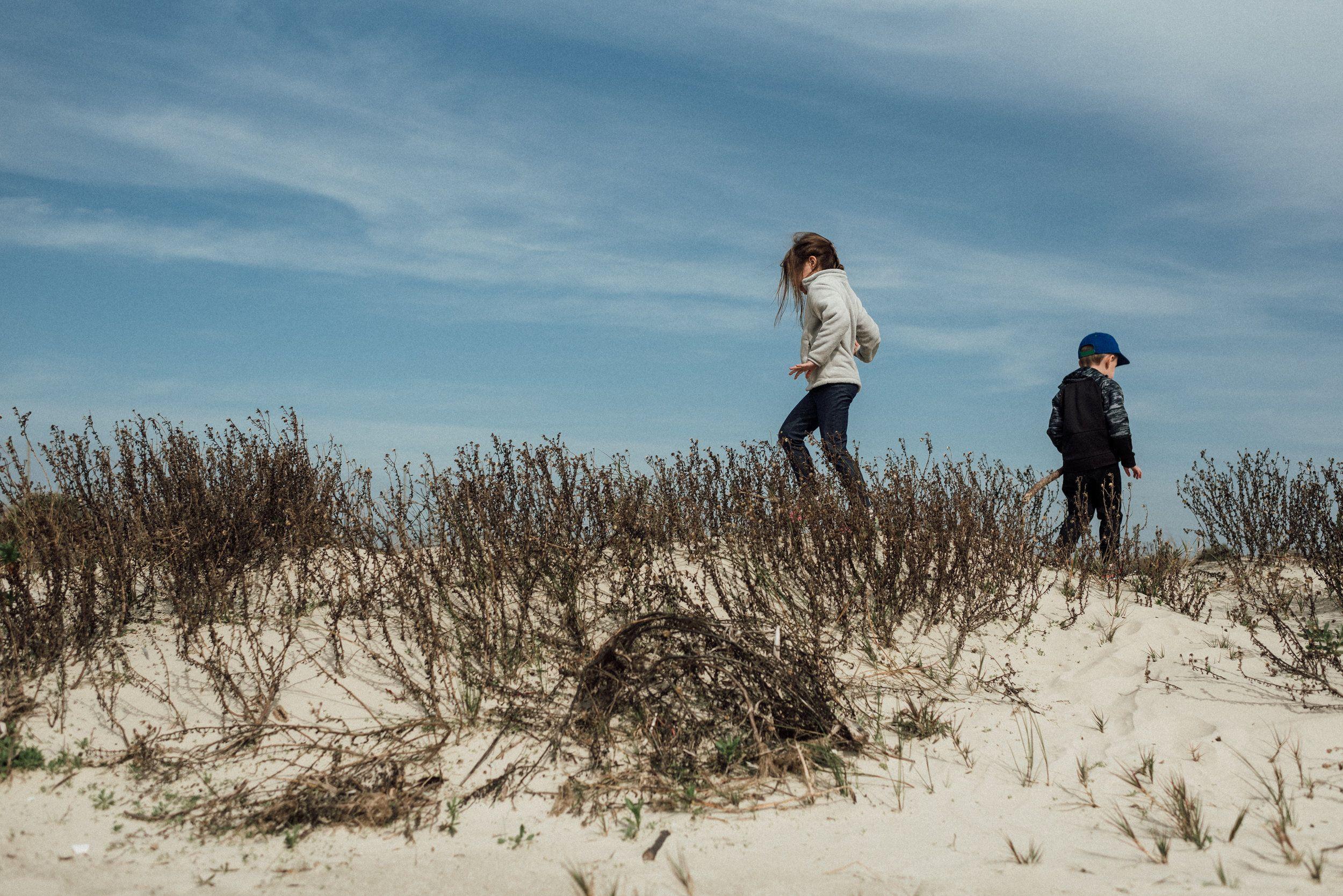 Pin by Monica Brown - Blog on RV Camping | Galveston ...