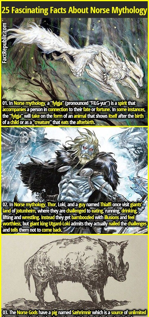 25 Fascinating Facts About Norse Mythology | Fact Republic #norsemythology