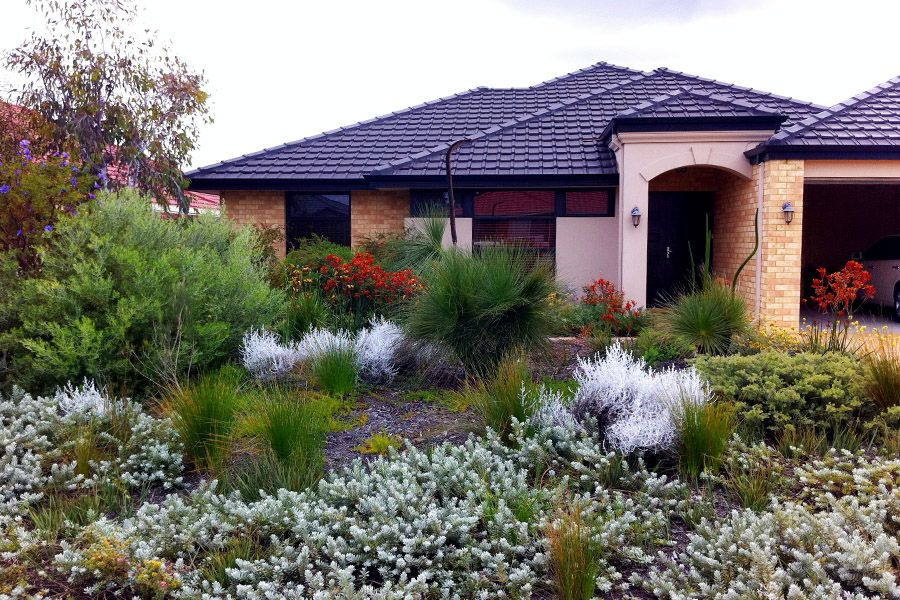 Image result for modern australian native gardens for Front garden designs perth