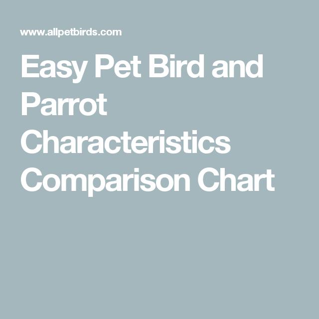 Easy Pet Bird And Parrot Characteristics Comparison Chart Pet Birds Easy Pets Pet Bird